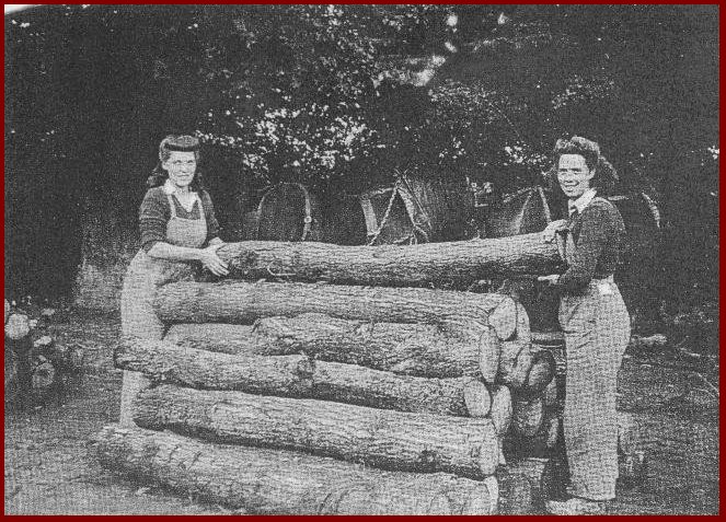 Lumber jills stacking logs